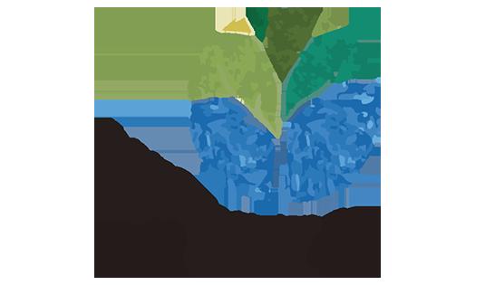 arezzo-logo-baia
